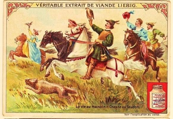 1905-chasse-au-faucon